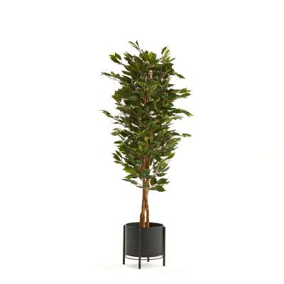 Ficus Benjamin artificial plant, H 1600 mm, incl. black steel pot on stand