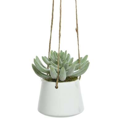 Artificial Hanging Potted Succulent Plant