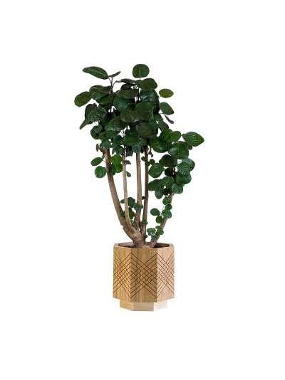 Large Oak Planter