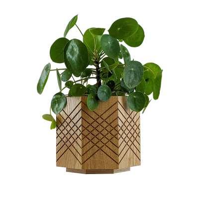Oak Planter