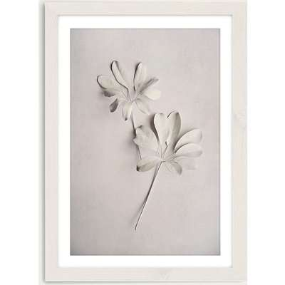 Alabaster Forest 2 Art Print White Frame