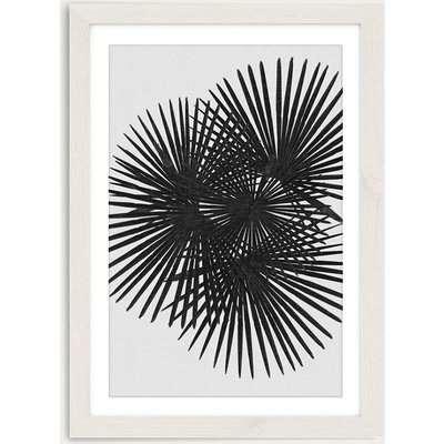 Fan Palm Black & White Art Print White Frame
