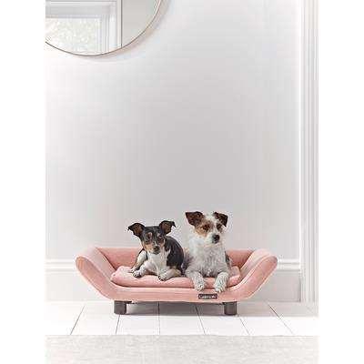 Fabulous Pet Lounger - Blush