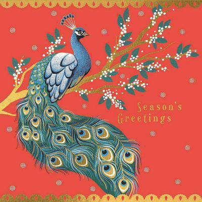 The Art File Sara Miller Peacock 8 Luxury Christmas Cards & Envelopes