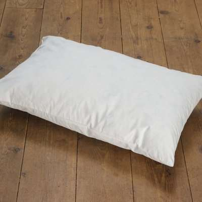 Duck Feather Cushion Pad White