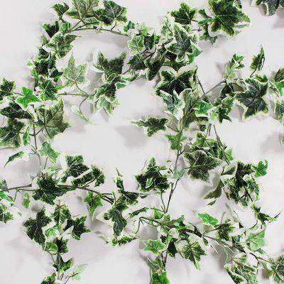 Pack of 6 Holland Ivy Garland Green and White