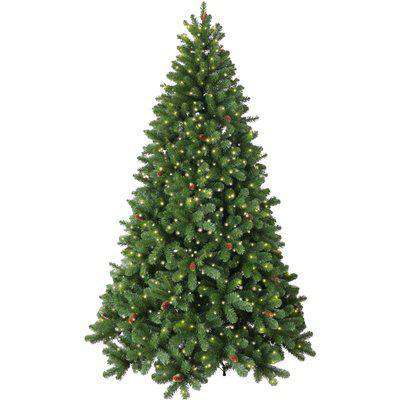 6ft Pre-Lit Linwood Fir Christmas Tree Green