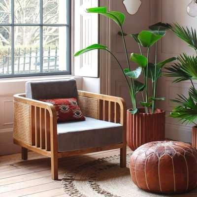 Cadance Cane Grey Velvet Armchair