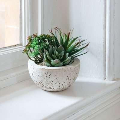 Faux Succulents Bowl