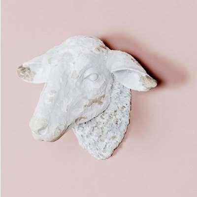 Sheep Head Wall Art