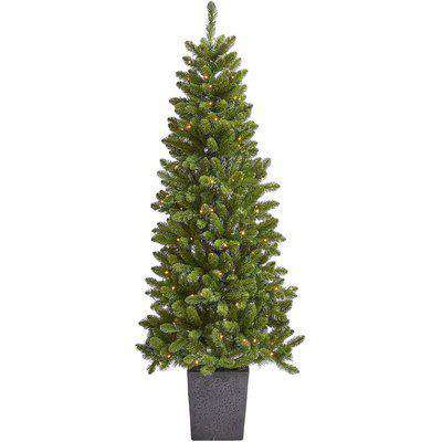 6ft Madison Potted Pre-lit Artificial Christmas Tree