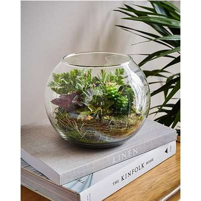 Fiori Mixed Succulent Glass Pot