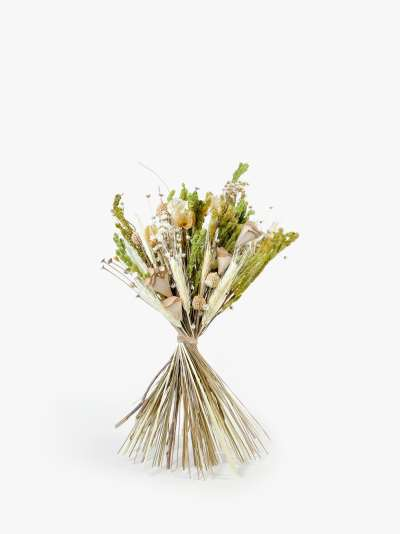 Ixia Flowers Meadow Neutral Dried Flowers