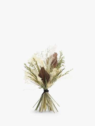 Ixia Flowers Neutral Premium Dried Flowers