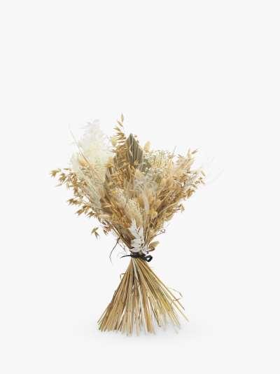 Ixia Flowers Whites Premium Dried Flowers