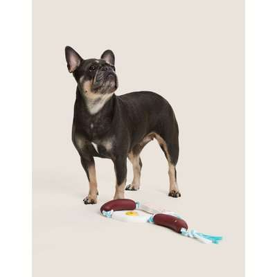 Fry Up String Pet Toy multi-coloured