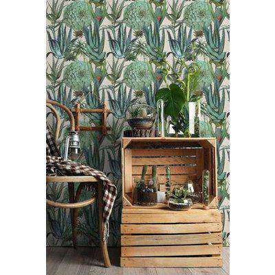 Mind The Gap The Rediscovered Paradise - Succulents Wallpaper