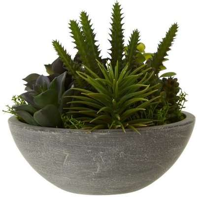 Teddy's Collection Faron Mixed Succulent Stone Effect Pot Grey
